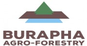 Burapha Agro-forestry Co., Ltd