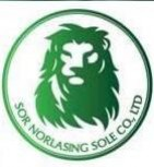 SOR NORLASING SOLE CO.,LTD - cvConnect
