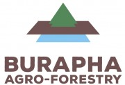 cvConnect.la - Burapha Agroforestry Co., Ltd